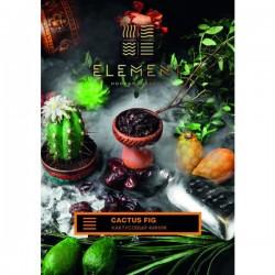 Табак для кальяна Element Cactus Fig Earth Line 40 гр